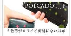 POLCADOT