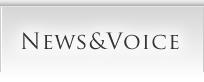 news_voice